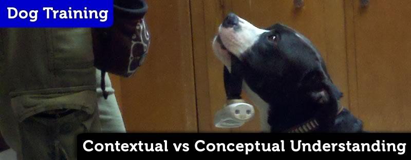 Contextual vs Conceptual Understanding