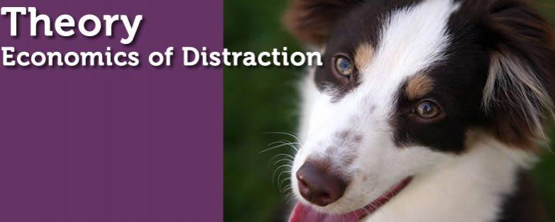 Economics of Distraction