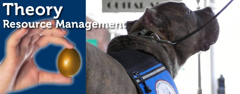 Resource Management in Dog Training