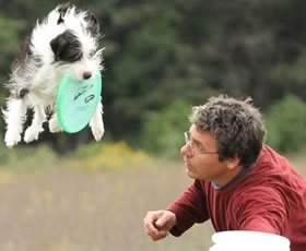 Positive Dog Trainer in the Hudson Valley