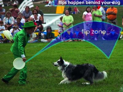 Flipshappen1