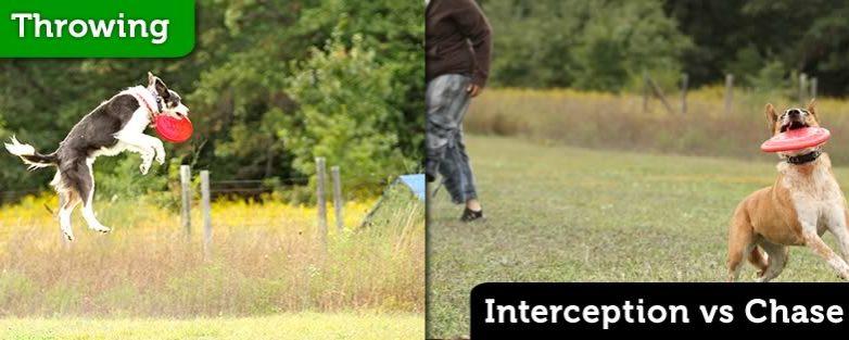 Interception vs Chase