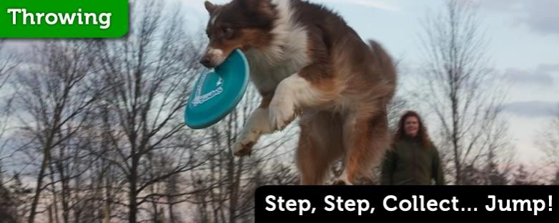 Step, Step, Collect… Jump!