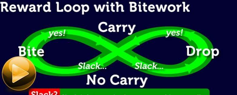Bitework and the Infinite Reward Loop