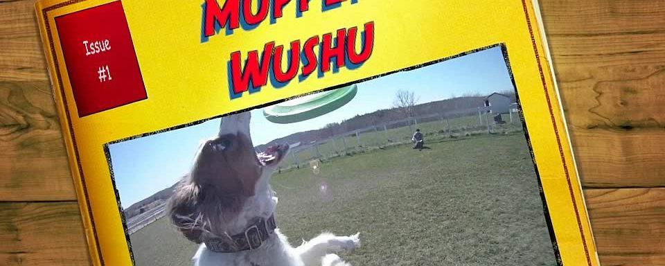 Muppet Wushu