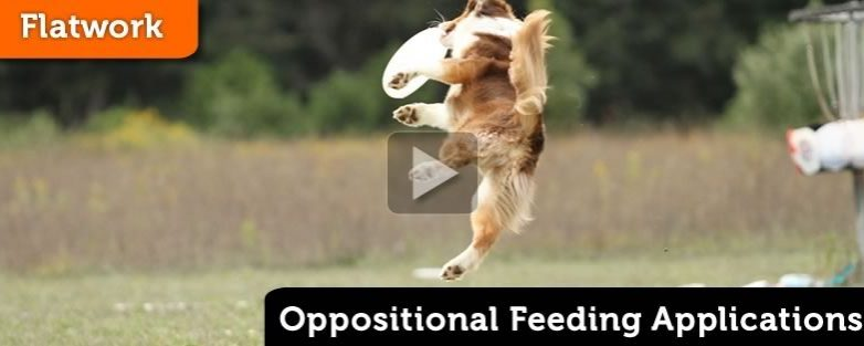 Oppositional Feeding Applications