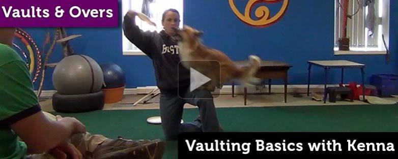 Vaulting Basics with Kenna