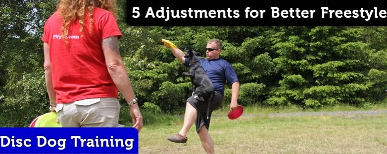 Five Simple Adjustments for Better Disc Dog Freestyle