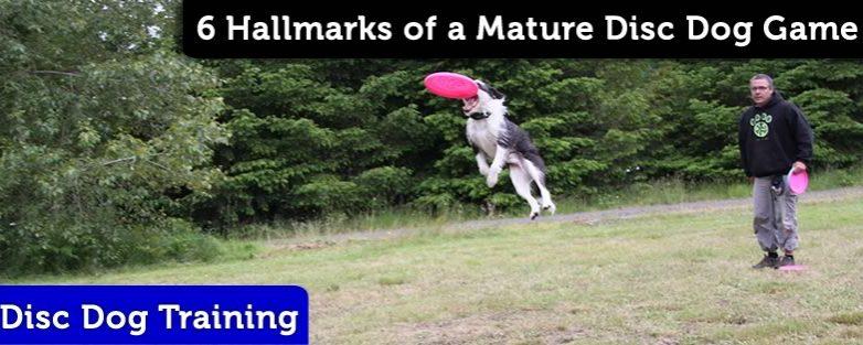 6 Hallmarks of a Mature Disc Dog Game