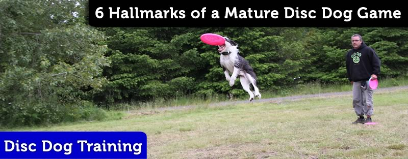 Six Hallmarks of a Mature Disc Dog Game