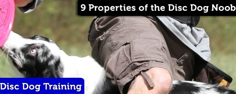 Nine Distinct & Observable Properties of the Disc Dog Noob
