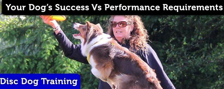 Success Vs Performance Requirements