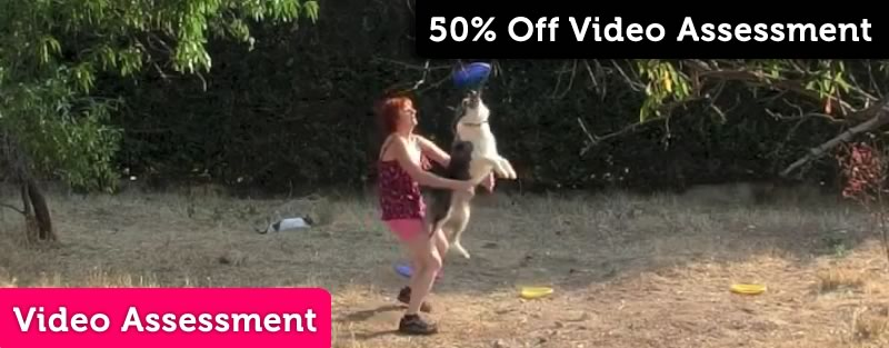 50% off Video Assessments