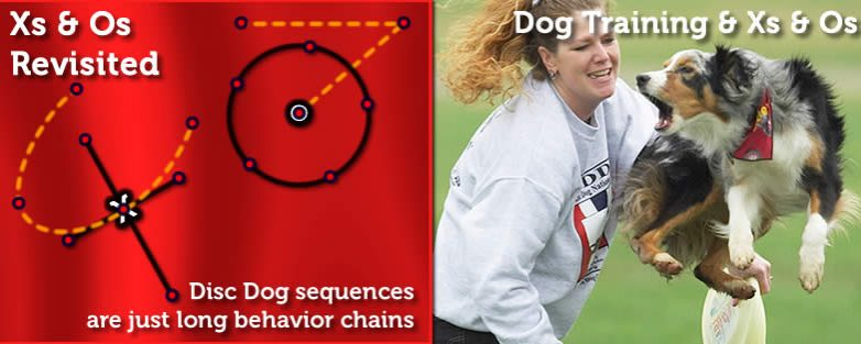Xs and Os in Terms of Dog Training