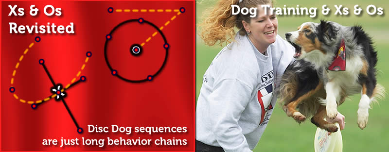 Disc Dog Xs and Os Revisited