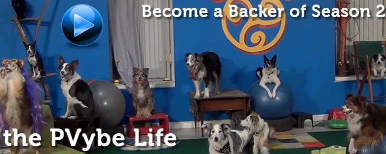 Crowdfunding the PVybe Life – Become a Backer of Our Show