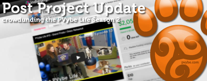 dog training webseries project update