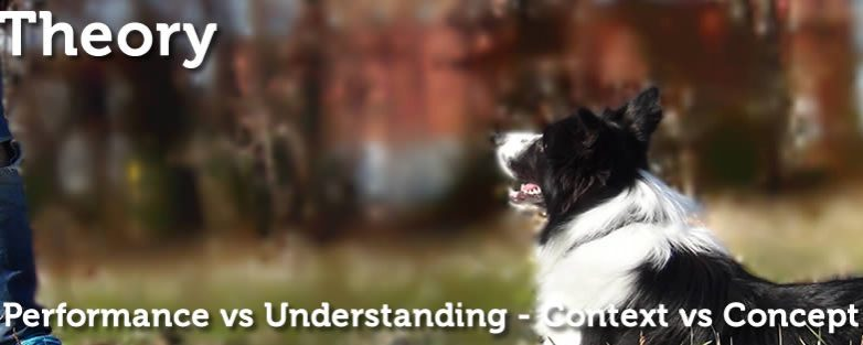 Performance vs Understanding – Context vs Concept