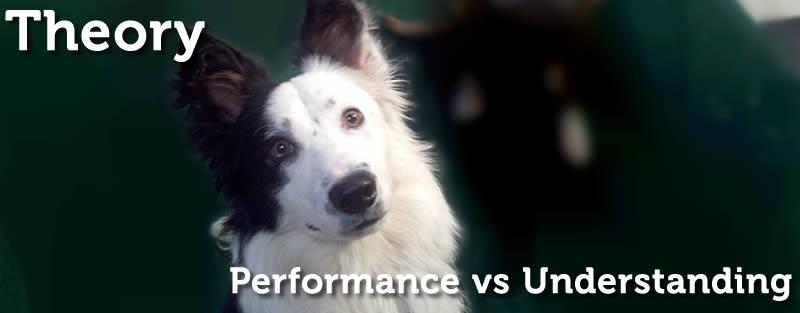 Performance is Not Understanding