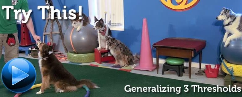 Try This! 3 Thresholds with a Bunch of Dogs