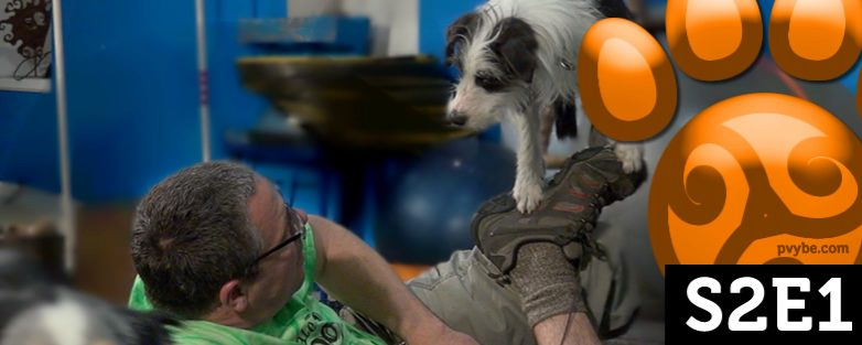 Pawsitive Vybe S2E1 – Got Attention?
