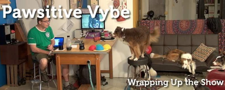 Pawsitive Vybe Show Wrap Up