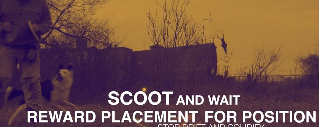 Scoot Fix – Bite for Wait and Better Position