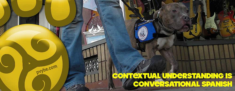 Contextual Understanding in Dog Training