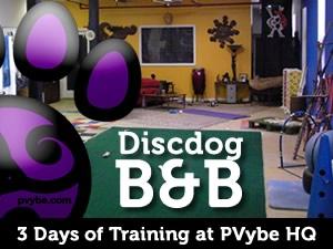 Destination Dog Training in the Hudson Valley.