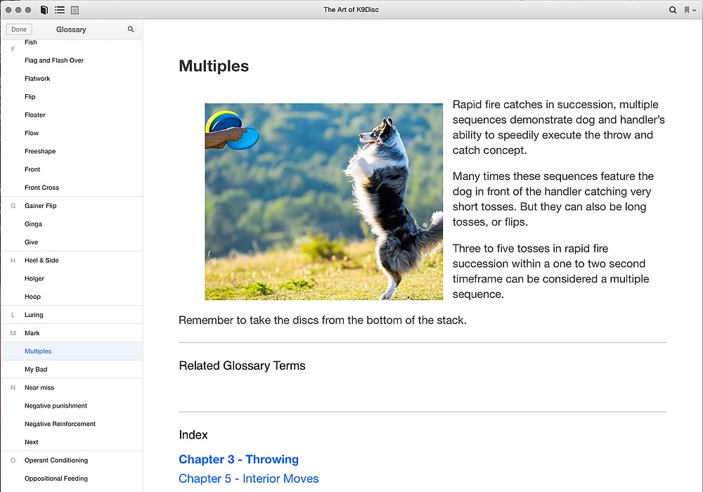 Glossary Page