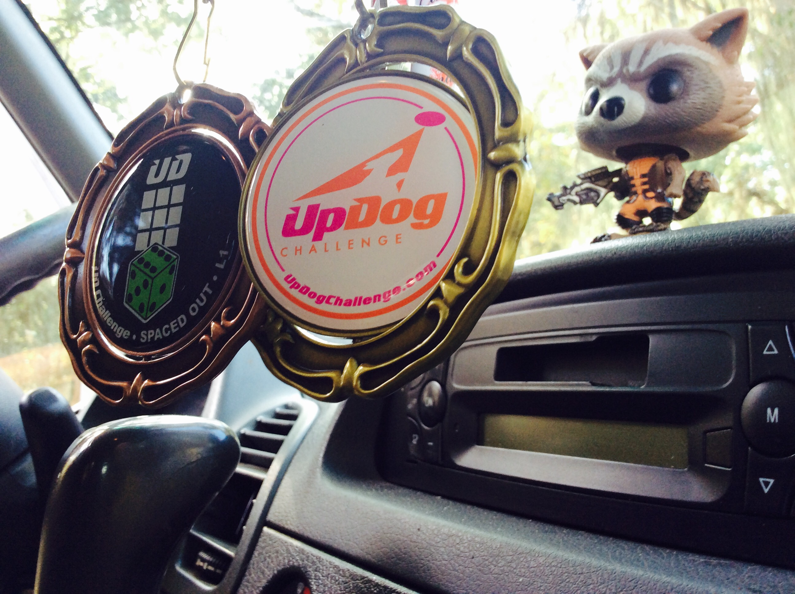 UpDog Spaced Out Level 1 Medals