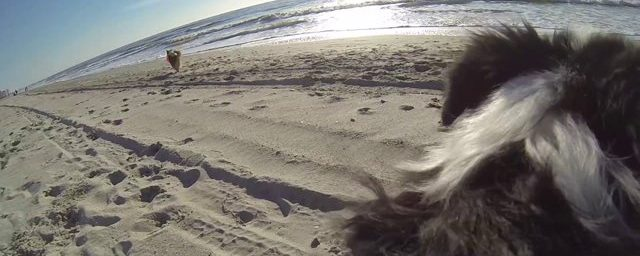 Epic Cam – Cabin Fever Breaks in Myrtle Beach