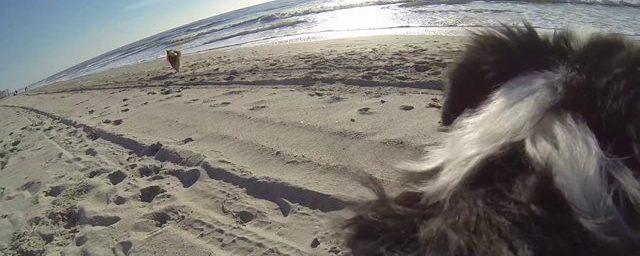 Epic Cam – Cabin Fever Breaks in Myrtle Beach