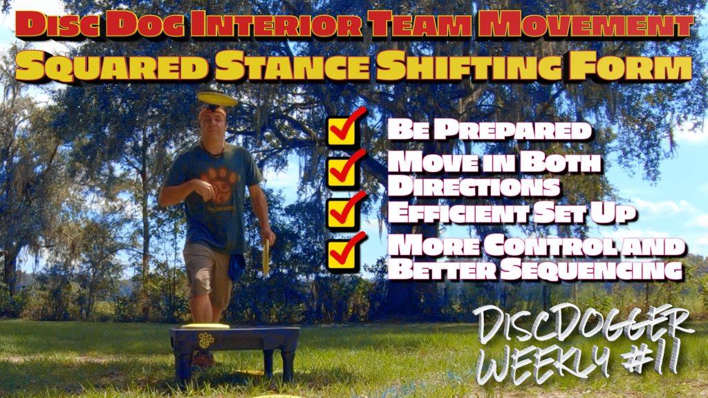 disc dog interior team movement