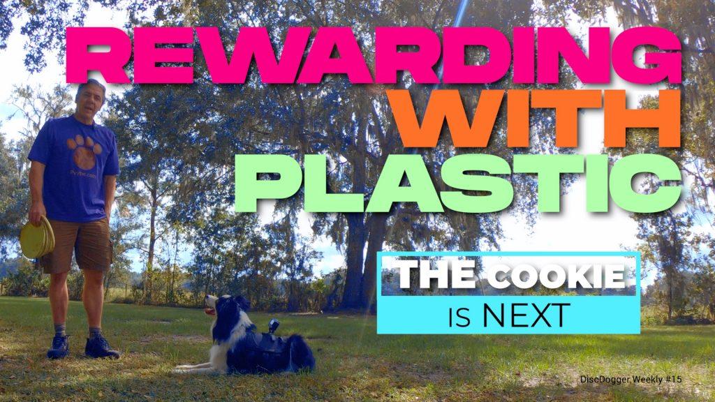 Rewarding with Plastic