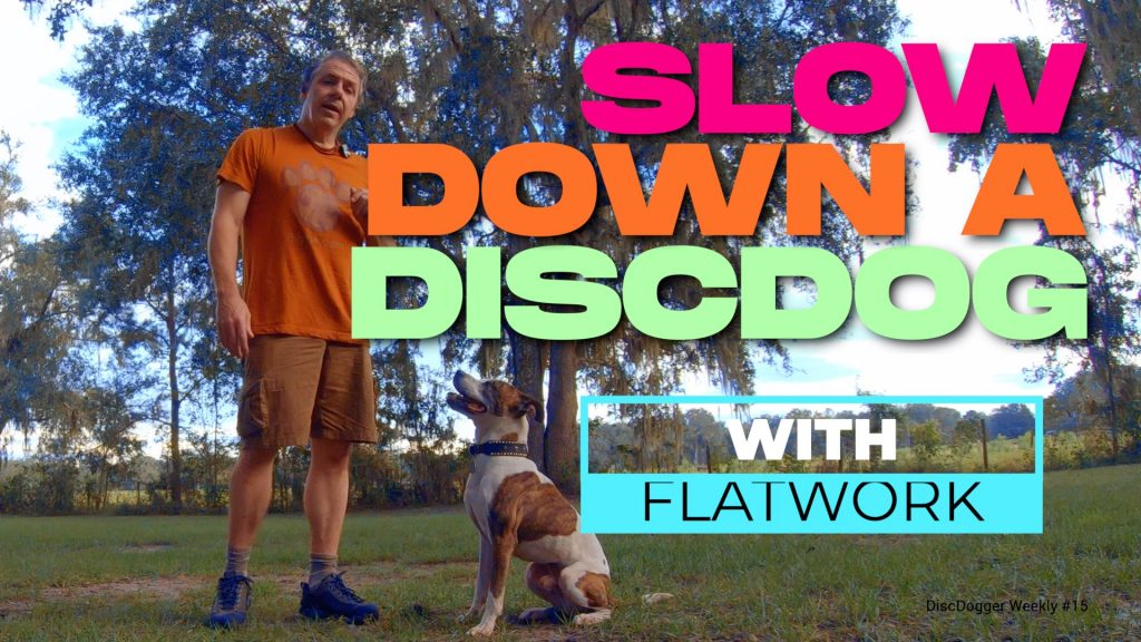 Slowing Down a Disc Dog
